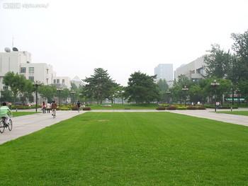 人造草坪专用橡胶颗粒