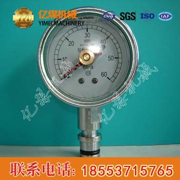 双针耐震压力表现货供应,BZY系列双针耐震压力表