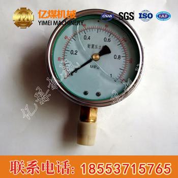 YN耐振压力表厂家销售,耐振压力表价格低廉