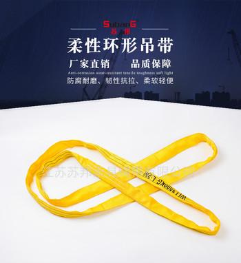苏邦 RH02型高强环眼吊带 环眼圆形吊装带 柔性吊装带