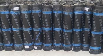 洛阳防水公司 弹性体(SBS、APP)改性沥青防水卷材