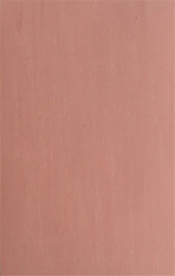 塑胶PVC地板