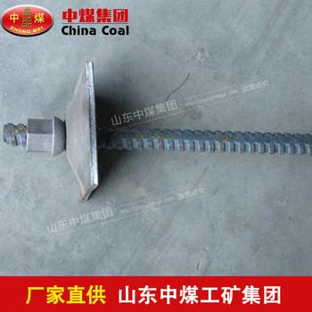 螺纹钢锚杆 螺纹钢锚杆生产