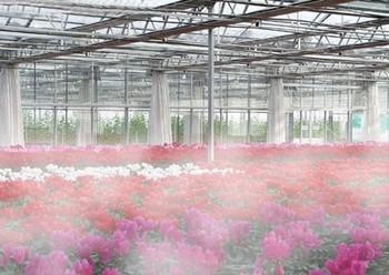 园艺花圃雾森方案