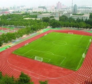 体育设施公道 (3)