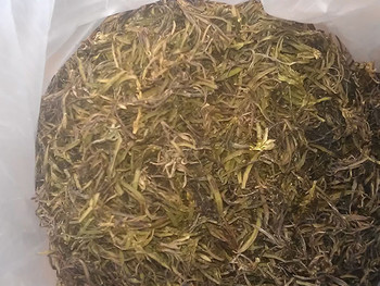 红豆杉茶叶