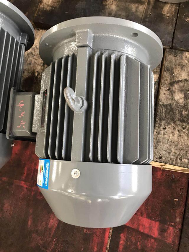 YE2普通电机