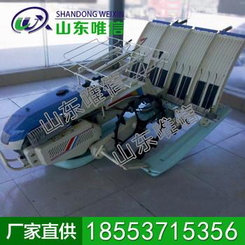 兩行水稻插秧機生產商現貨 水稻插秧機