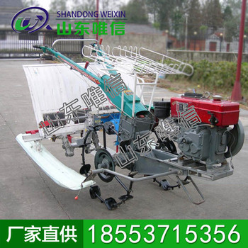 六行水稻插秧機生產商現貨 水稻插秧機