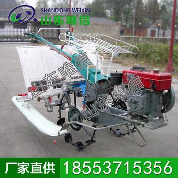 六行水稻插秧机生产商现货 水稻插秧机
