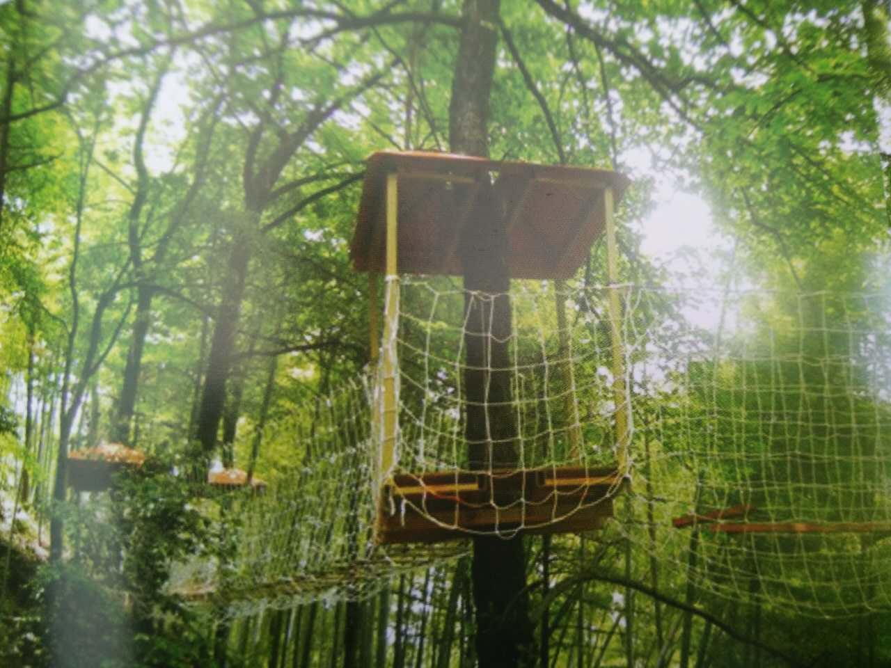 适合人群:   树上穿越/飞索森林探险公园适合人群广泛.