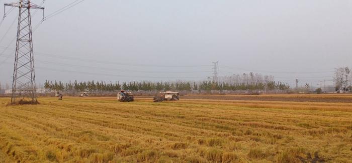 农业科技圆满完成秋收工作
