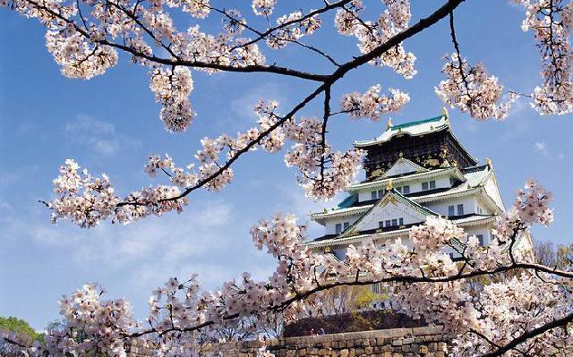 日本双飞六日游