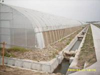单体塑料温室