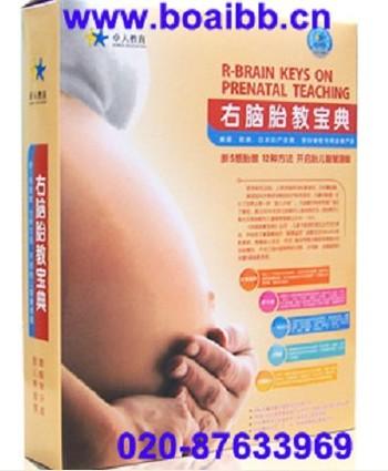 卓人右脑胎教宝典-美国引进国内超值胎教系统