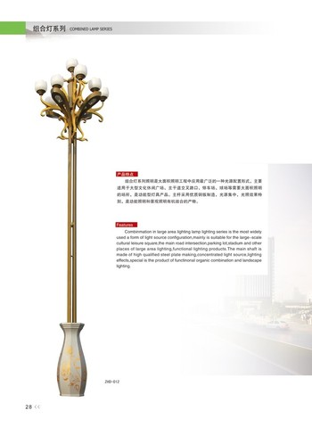 名族文化太阳能路灯 (41)