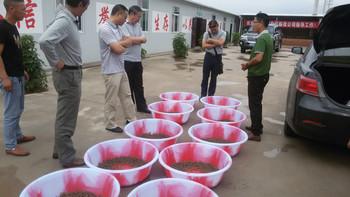 富民农业发展公司蝎子养殖伙伴