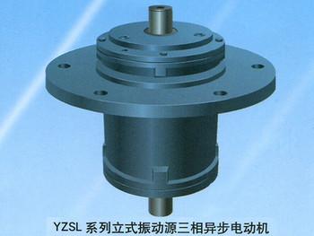 YZSL系列立式振动源三相异步电动机