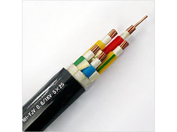 0.6KV/1KV交聯聚乙烯絕緣耐火電力電纜