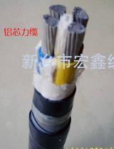 0.6KV/1KV聚氯乙烯絕緣鎧裝電力電纜