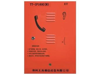 紧急电话分机,功放系列 TT-IP160G(N)
