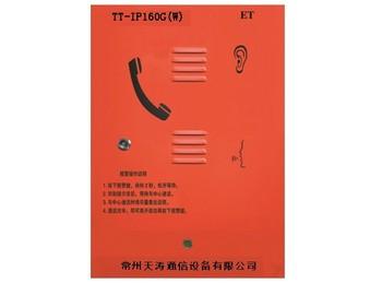 紧急电话分机,功放系列 TT-IP160G(W)