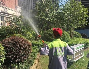 虫害防治服务
